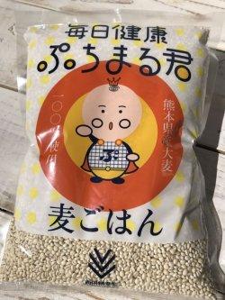 画像1: 毎日健康 ぷちまる君 1kg (熊本県産 大麦100%使用 )
