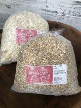 兵庫県産農薬、肥料不使用の白米使用!! 生米麹  1kg