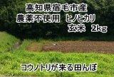 高知県の西端、宿毛市産  「ヒノヒカリ」 玄米 2キロ (農薬不使用)