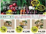 【定期便】厳選野菜セット